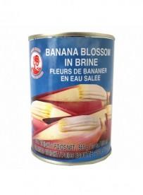 Fleurs de bananier en eau salée - COCK